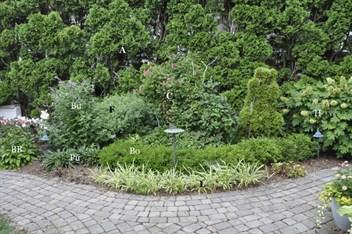 Gardenatoz Design A Perennial Bed Garden A To Z